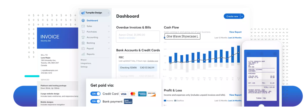 Review Wave Accounting: User-friendly Accounting Software - appvizer