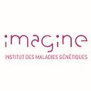 Protecsys 2 Suite-Institut-Imagine